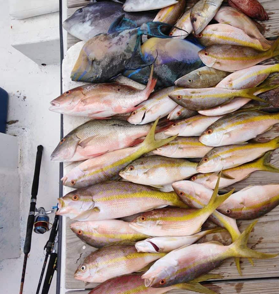 Belize-Guide-Co-fish-catch