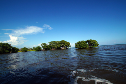 Belize-Guide-Co-water-view